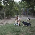 """""""Io non ti abbandono"""", parte la campagna dell' """"Associazione Difesa Animali"""" contro l'abbandono estivo dei cani"""